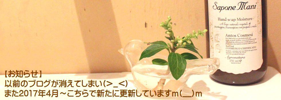 気まぐれ日記 by Mie